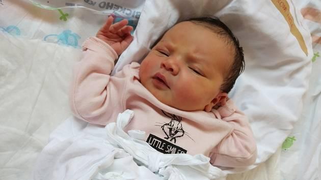 NELA CVRKALOVÁ se narodila 11. června v 8.27 hodin ve Svitavské nemocnici. Měřila 49 centimetrů a vážila 3,44 kilogramu. Z dcerky se radují rodiče Adéla a Pavel Cvrkalovi a bratr Adámek. Foto: rodina