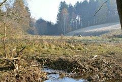 Místo, kde bude stát poldr chránící Němčice.
