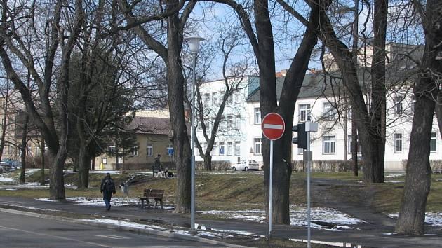 Wolkerova alej ve Svitavách
