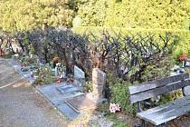 Na hřbitově v Osíku hořelo.