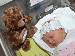 SOFIE BLAŽKOVÁ. Narodila se 7. ledna ve svitavské porodnici Soně Hockové a Davidu Blažkovi ze Svitav. Měřila 51 centimetrů a vážila           3,4   kilogramu.