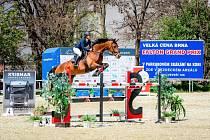 Senzační brněnské vítězky. Štěpánka Zavoralová s Diabellou překvapila na kolbišti všechny konkurenty a po dvou perfektních jízdách z toho bylo překvapivé, ale zasloužené prvenství.