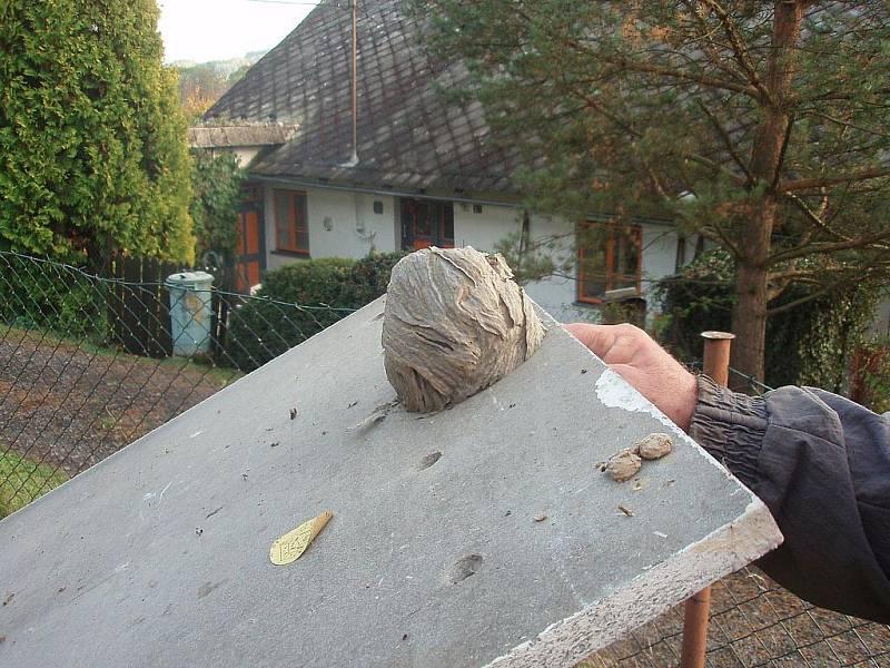 Vosy si udělaly obří hnízdo na dvířkách boudy plynoměru.