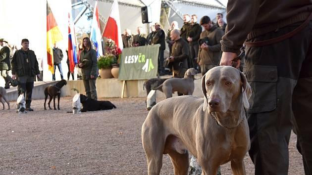 Soutěž nejlepších loveckých psů ze střední Evropy.
