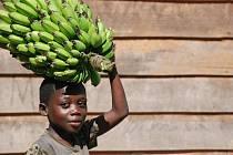 Fotografie zachycují různé podoby dětské práce, se kterými se Markéta Kutilová setkala při svých cestách zejména v Africe a Asii.