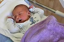 BOHUMIL BARÁNEK se narodil 7. května ve 12.22 hodin. Vážil 3,46 kilogramu a měřil 51 centimetrů. Vyrůstat bude v Poličce s rodiči Janou a Vítem a dvouletou sestřičkou Beátkou.