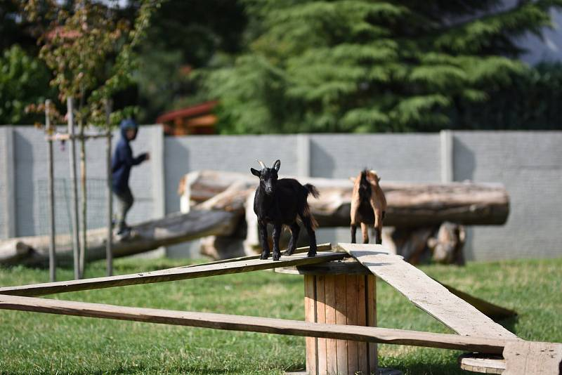 Exotika na ranči, to je malá zoo v Bítovanech na Chrudimsku.