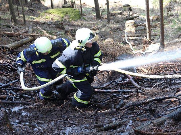 Požár lesa v Hamrech.