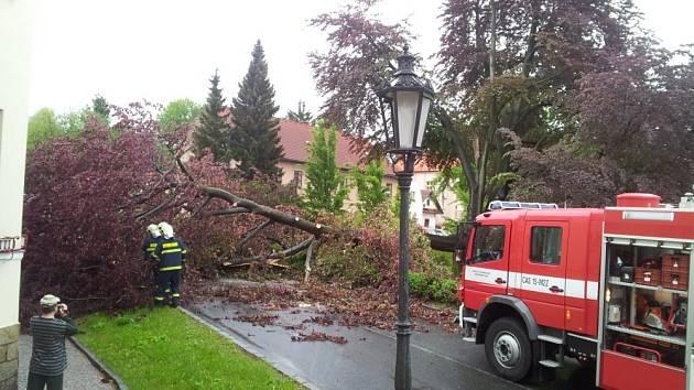 Strom zatarasil silnici