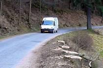 V  HORNÍM   ÚJEZDU  kácejí   u silnice vzrostlé stromy.  Plánují úpravu  komunikace.