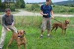Majitelé rhodézkých ridgebacků se sešli na společném táboře v rekreačním areálu na Svojanově u Moravské Třebové