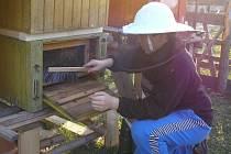 Dvanáctiletý Štěpán Kovář z Radiměře je ve včelaření nováček