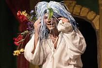 """Lidé se pobavili ztvárnění klasické romantiky divadelníky z Amadisu, kde roli Julie vytvořil Ondřej Buchta, který si zahrál také """"bláznivou"""" Ofélii. To Klára Havránková představovala nejen Othella, prince dánského."""