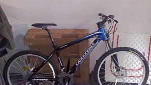Pokus o krádež bicyklu v Brně.