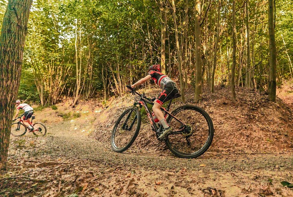 Moravská Třebová vybudovala v lesích pod rozhlednou Pastýřka 13 kilometrů tratí pro cyklisty.