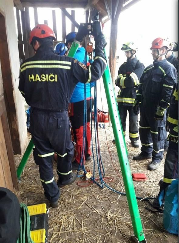 Profesionální hasiči mají za sebou náročný zásah při záchraně koně.