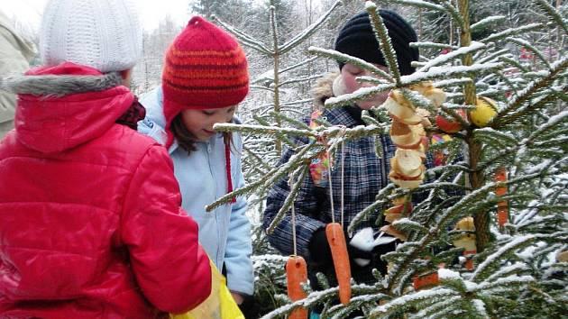 Děti nadělovaly zvířátkům v lese