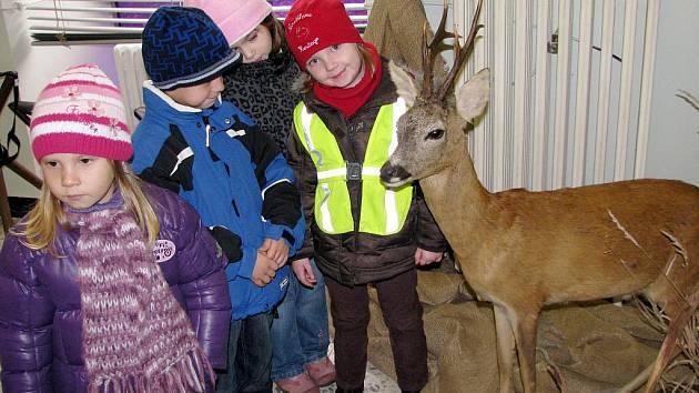 Děti se seznámily se zvířaty.