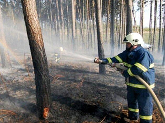 Ilustrační foto: Lesníci kontrolují příměstské porosty, aby včas zareagovali na případný požár.