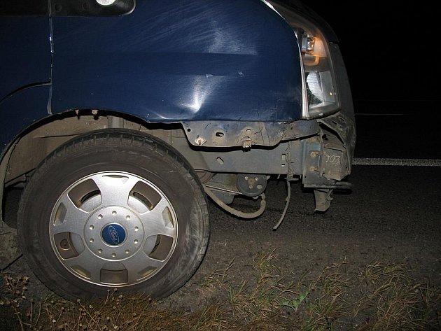 Řidič se střetl s dvěma prasaty.