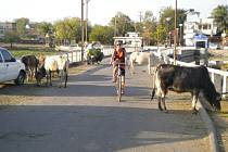 VÝLET NA KOLÁCH po Udaipuru. Provoz byl někdy opravdu hustý.