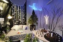 Tradiční vánoční výstava na zahradnické a technické škole.