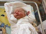 ALŽBĚTA ZEDNÍKOVÁ. Krásná holčička spatřila světlo světa 27. února ve svitavské porodnici. Doma bude v Bělé nad Svitavou.