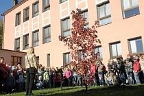 Školáci v Morašicích zasadili slavnostně strom – ambroň