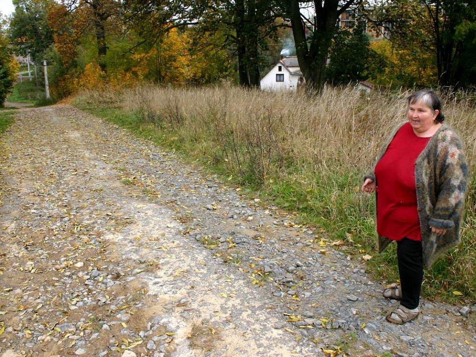 Marii Svobodové se nelíbí, že zastupitelé upřednostnili opravu cesty, která nebyla tolik poškozená.
