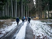 Křížová cesta ke kapli vede lesem