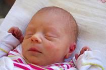 ŠÁRKA POKORNÁ.Rodičům Martě Navrátilové Jaroslavovi Pokornému z Chornic přibyla ke klukům, Davidovi (16) a Filipovi (13), radost i starost o dcerku. Šárka se narodila ve svitavské porodnici 20. září v 10 hodin. Měřila 44 centimetrů a vážila 2,25 kg.