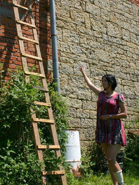 Nevýtané hosty, včely v domě, ukazuje majitelka domu.