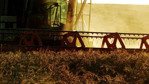 Zemědělci hlásí hotovo. Žně ve východních Čechách skončily.