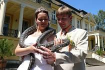 """Pár z Litomyšlska si řekl své """"ANO"""" v zologické zahradě."""