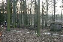 Požár lesa v Cerekvice.