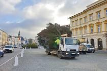Z Rumunské ulice na náměstí Míru doputoval vánoční strom Svitav.