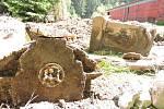 ČÁST BOŽÍCH MUK nalezených ve vojenském areálu v Květné. Vandal zničil reliéf i medailon z keramiky.