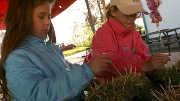 Monika Bažantová vyrábí ježka ze stébel trávy a párátek.