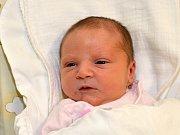 KRISTÝNA DOČEKALOVÁ. Narodila se 12. ledna Petře a Josefovi z Bělé nad Svitavou. Měřila 51 centimetrů a vážila 3,45 kilogramu.
