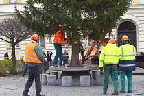 Instalace vánočního stromku ve Svitavách.