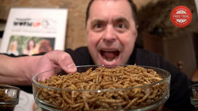 Jaroslav Němec z Bystrého je držitelem nového světového rekordu. Během půl hodiny snědl skoro 10 tisíc sušených červů.