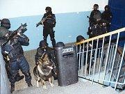 Policejní cela. Ilustrační foto.