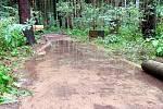 Vodárenský les bude několik dní uzavřený