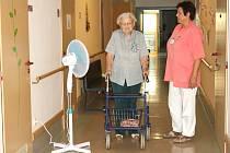 VENTILÁTORY POMÁHAJÍ seniorům zvládnout horké dny, kdy teplota venku atakuje čtyřicítku. Odpoledne nechodí ven, raději zůstávají v chladném domově.
