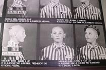 Školáci z Brněnce si v Osvětimi připomněli příběhy lidí, kteří zahynuli v koncentračním táboře.
