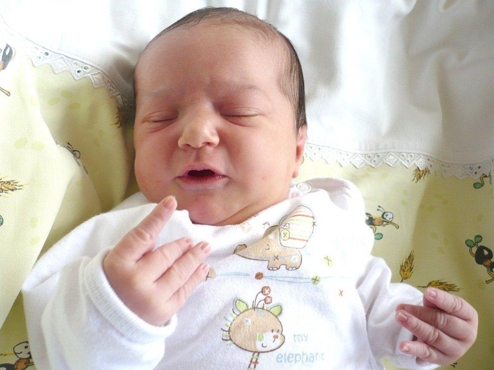 PETRUŠKA POPELKOVÁ. Rodiče Lenka a Vojtěch z Poličky se od 20. května 23 hodin a čtyř minut radují za narození dcerušky. Sestřičky ve svitavské porodnici jí navážily 3,65 kilogramu a naměřily 51 centimetrů.