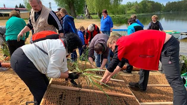 Desítky dobrovolníků v sobotu osázeli plovoucí ostrůvky pro rybník Rosnička.