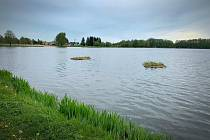 Rybník Rosnička