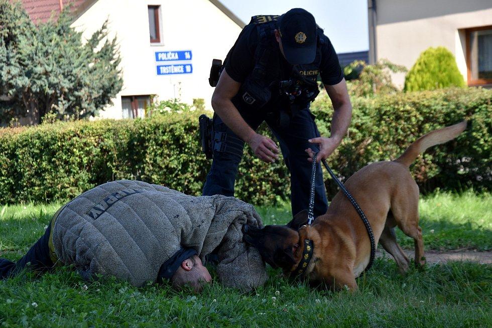 Děti v Dolním Újezdu si v neděli vyzkoušely jízdu zručnosti přes různé překážky. Akci navštívili policisté ze Svitav se služebními psy.