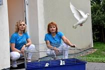 Mobilní hospic Bílá Holubice v Dolním Újezdu u Litomyšle zahájil provoz. Symbolicky vypuštěním deseti bílých holubic.
